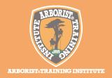 アーボリストトレーニング